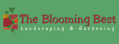 Blooming Best Website Logo 1