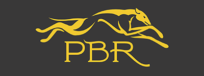 PBR Website Logo 1